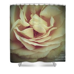 Ti Voglio Bene Mamma Shower Curtain by Robert ONeil