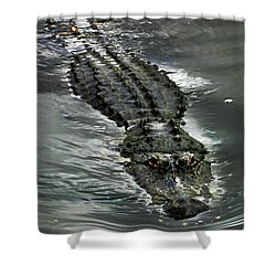Shower Curtain featuring the photograph Tick Tock by Anthony Jones