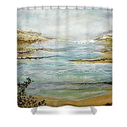 Tidal Pool 1 Shower Curtain