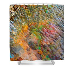 Tidal Pool And Coral Shower Curtain