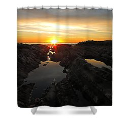 Tidepools Shower Curtain