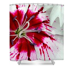 Tie-dye Pallette Shower Curtain
