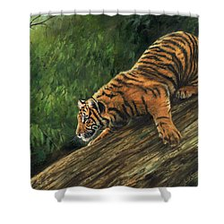 Shower Curtain featuring the painting Tiger Descending Tree by David Stribbling