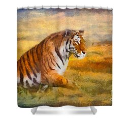 Tiger Dreams Shower Curtain by Aimelle