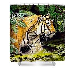 Tiger In The Dundurban Delta Shower Curtain