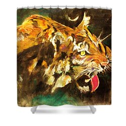 Tiger Shower Curtain by Khalid Saeed