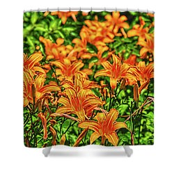 Tiger Lilies Shower Curtain by Pat Cook