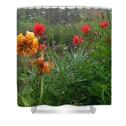Tiger Lillies And Indian Paintbrush Shower Curtain by Karen Molenaar Terrell