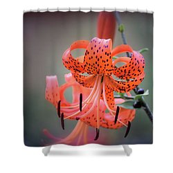 Tiger Lily 2 Shower Curtain