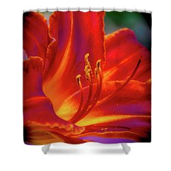 Tiger Lily Shower Curtain by Mark Dunton