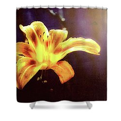 Tiger Lily On Waters Edge Shower Curtain by Bob Orsillo