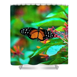 Tiger Longwing Butterfly Shower Curtain