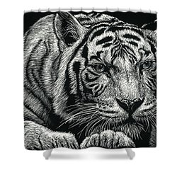 Tiger Pause Shower Curtain
