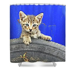 Tiger Paw Shower Curtain