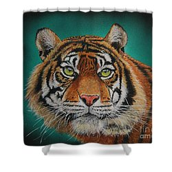 Tiger Portrait......amur Tiger Shower Curtain