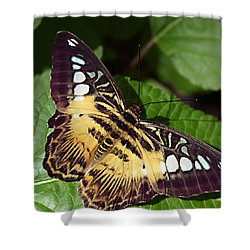 Tiger Print --- Clipper Butterfly Shower Curtain