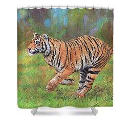 Shower Curtain featuring the painting Tiger Running by David Stribbling