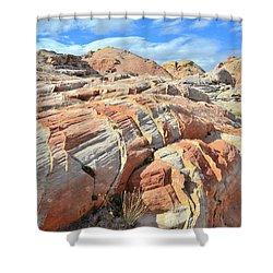 Tiger Stripes In Valley Of Fire Shower Curtain