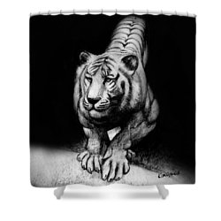 Shower Curtain featuring the drawing Tiger Study by Kim Gauge