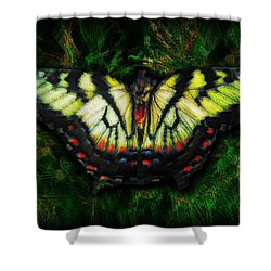 Tiger Swallowtail Shower Curtain by Iowan Stone-Flowers