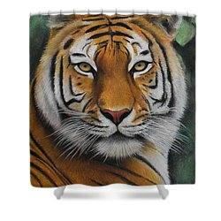 Tiger - The Heart Of India Shower Curtain