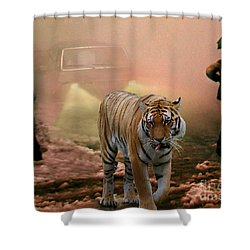 Tiger Walking Down A Snow Slushy Street Shower Curtain