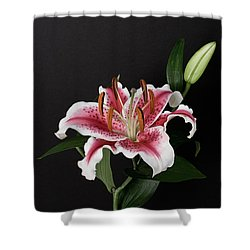 Tiger Woods Lily Shower Curtain