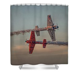 Tiger Yak 55 Shower Curtain by Dorothy Cunningham