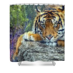 Tigerland Shower Curtain by Michael Cleere