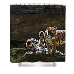 Tigers In The Night Shower Curtain