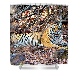 Tigress In The Woods Shower Curtain by Pravine Chester