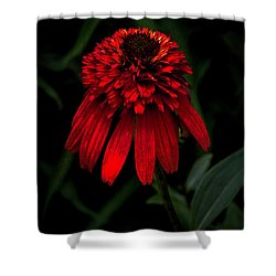 Tiki Torch Shower Curtain by Judy Wolinsky