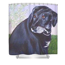 Tiko, Lovable Family Pet. Shower Curtain