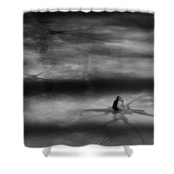 Shower Curtain featuring the photograph Til Spring by Mark Fuller
