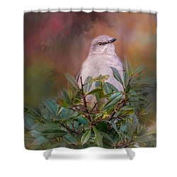Tilda In The Holly Shower Curtain