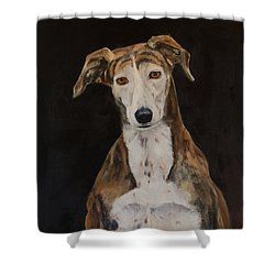 Tilly The Lurcher Shower Curtain