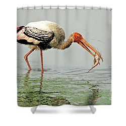 Time For A Meal Shower Curtain by Pravine Chester