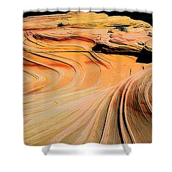 Time Lines Shower Curtain