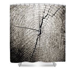 Time Passage Shower Curtain by Colleen Kammerer
