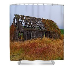 Shower Curtain featuring the photograph Time Passages by Broderick Delaney
