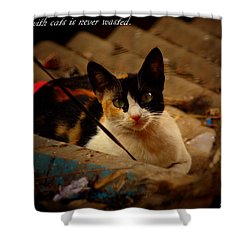 Time Spent With Cats. Shower Curtain by Salman Ravish