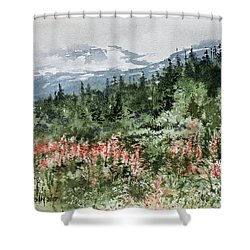 Time To Go Home Shower Curtain by Monte Toon