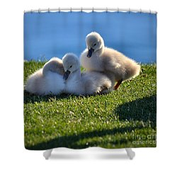 Time To Snuggle Shower Curtain