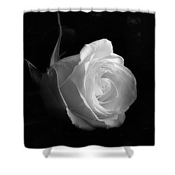 Timeless Beauty Shower Curtain by Roy McPeak