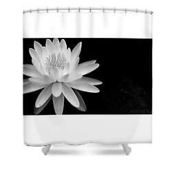 Black And White -timeless Lily Shower Curtain