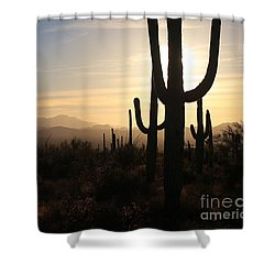 Timeless Shower Curtain by Sheila Ping