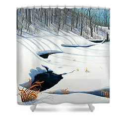 Timm Drive Ravine Shower Curtain