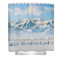 Timp In Winter Shower Curtain