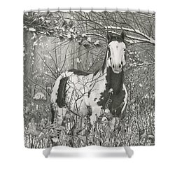 Tinman Shower Curtain