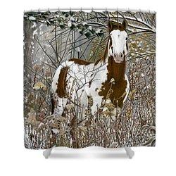 Tinman, Pastel Shower Curtain